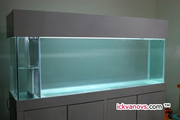 Aquarium Baru Ickvanovs Blog